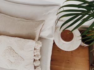 cama y planta