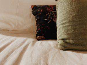 almohadas y cojines en un colchon